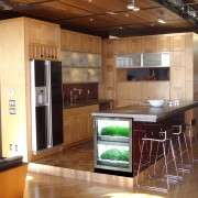 Kitchen-Example-001